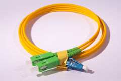 Fiber optic cable  on white Stock Photography