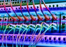 Fiber Optic cables connected to an optic ports and cable Royalty Free Stock Photo