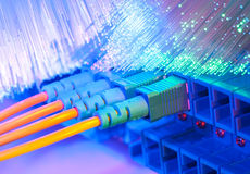 Fiber Optic cables connected to an optic ports Stock Images