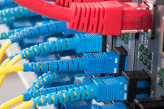 Fiber Optic cables connected to an optic ports Royalty Free Stock Image