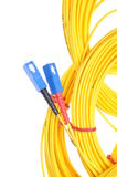 Fiber optic cables Stock Images