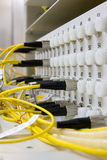Fiber optic Royalty Free Stock Photos
