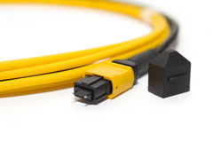 Fiber optic MTP (MPO) pigtail, patchcord connectors Royalty Free Stock Photo