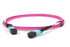 Fiber optic MTP (MPO) pigtail, patchcord connectors Royalty Free Stock Photos