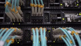 Fiber optic patch cords plugged into a network switch or router with blinking green led lights. Big data center