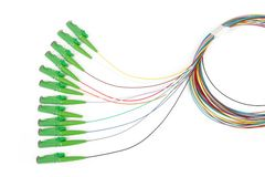 Fiber optic single mode hybrid patch cord. Single mode fan out patch cord jumper with green fiber optic connector isolated on white background royalty free stock images
