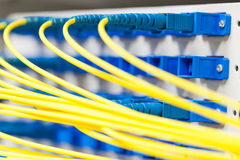Fiber optic in spliter Royalty Free Stock Photo