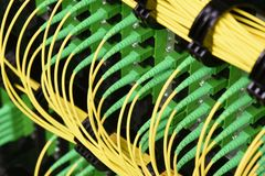Fiber optical cables with connectors type SC-APC single mode. In data center Stock Photography