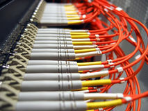 Fiber Optical Network Royalty Free Stock Image