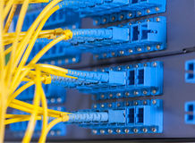 Optical network cables and servers Stock Photos