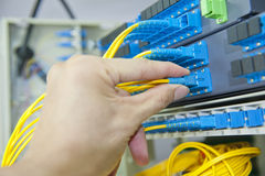 Fiber optical network cables patch panel Stock Images