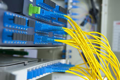 Fiber optical network cables patch panel Stock Photography