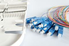 Fiber optical patch cord Royalty Free Stock Image