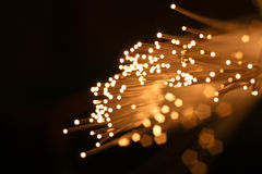 Fiber Optics Close-Up. Abstract glowing background for various design artwork Royalty Free Stock Photo
