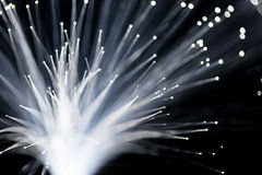 Fiber optics close up Royalty Free Stock Photo