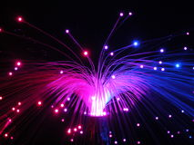 Fiber optics lights at night. Multicolored decorative fiber glass lamp, on a black background Royalty Free Stock Photo