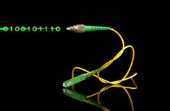 Fiber optics path cord and light digital signal Stock Image