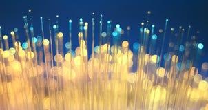 Fiber optics close-up stock images