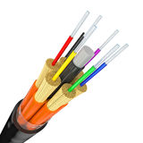 Fiber optics on white Royalty Free Stock Images