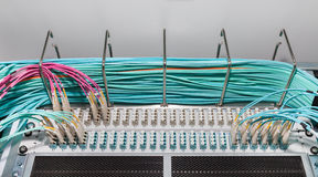 Fiber Patch Panel and Distributoren for Cloud Services Stock Photos