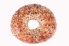 Fiber Rich Bagel. Multigrain bagel on white background Stock Photography