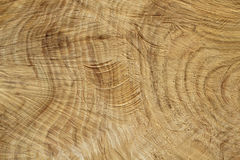 Fiber tree trunk background Stock Photos