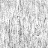 Fiber Wooden Texture. Grainy Wooden Overlay Texture for your design. EPS10 Royalty Free Stock Photos