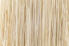 Fibers of a brush, close-up.  royalty free stock photography