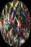 Fibers from cottonwood seed pod in digitally altered, abstract m. Bright, vibrant, abstract micrograph of multicolor, thick fibers from cottonwood seed pod Royalty Free Stock Photo