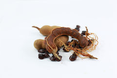 Fibers of tamarind. Royalty Free Stock Photo