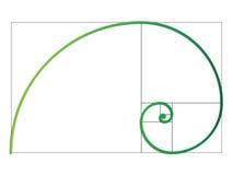 The Fibonacci spiral. Vector EPS 10 Royalty Free Stock Photos