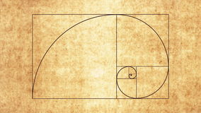 Fibonacci spirala zbiory wideo