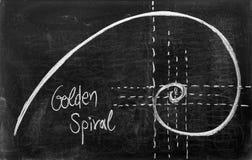Fibonaccispiraal Stock Afbeelding
