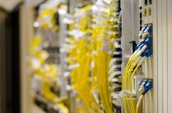 A fibra ótica conecta ao equipamento do cartão é usada na telecomunicação Selecione o foco Foto de Stock Royalty Free