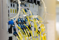 A fibra ótica conecta ao equipamento do cartão é usada na telecomunicação Selecione o foco Fotos de Stock