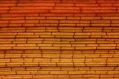 Fibra de planta da textura Imagem de Stock
