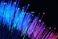 Fibras ópticas Foto de Stock