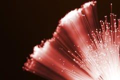 Fibras ópticas vermelhas Fotos de Stock Royalty Free