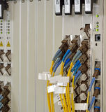 Fibras óticas com conectores de SC/LC Eq de Service Provider do Internet imagens de stock royalty free