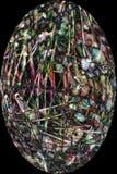 Fibras de la vaina de la semilla del cottonwood en m digital alterado, abstracto imágenes de archivo libres de regalías