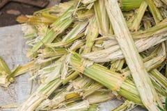 Fibras naturais da celulose do cana-de-açúcar e fonte de combustível biológico do álcool etílico imagem de stock