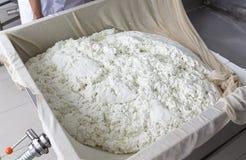 Fibre de gaze de buffle de production de fromage Image stock