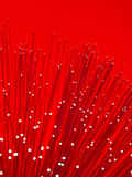 Fibre Optic Stock Image