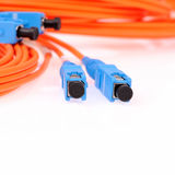 Fibre Optic Network Cables Stock Photography