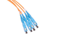 Fibre Optic Network Cables Royalty Free Stock Photo