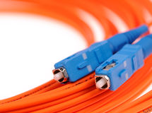 Fibre Optic Network Cables Royalty Free Stock Photography