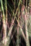 Fibres de cosse de graine de peuplier en m digitalement changé et abstrait Photographie stock libre de droits