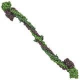 Fibrinogen chemical struktur Royaltyfria Bilder