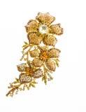 Fibula costosa dei gioielli Immagini Stock