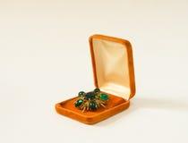 Fibula d'annata in una scatola attuale su fondo bianco Woman& x27; gioielli di s Fotografia Stock Libera da Diritti